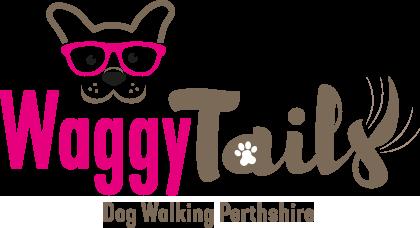 Dog Walking Services Perth