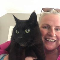 Fully insured Cat sitters Waggy Tails Perth